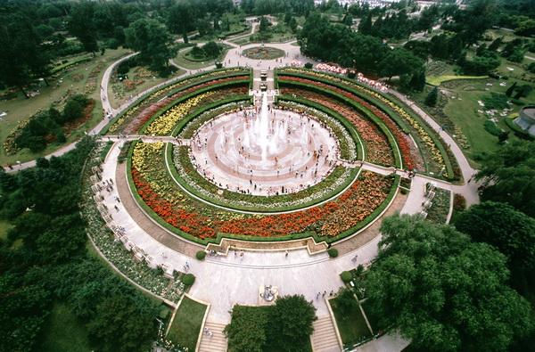 北京植物园月季园