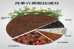 月季、绣球、铁线莲专用基质/营养土