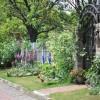 亲自设计并打理一个600多平的花园,是一种什么样的体验?