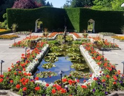 加拿大布查德花园里的月季图赏