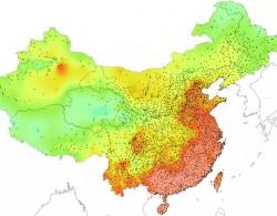 适合闽粤桂琼,耐高温的月季品种推荐
