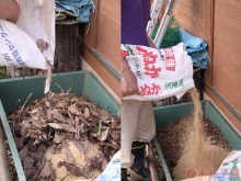 月季可以埋鱼肠做花肥吗?