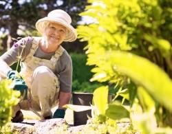 世界上最好的长寿生活方式:拈花惹草