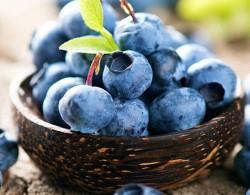 蓝莓图片_蓝莓种植方法