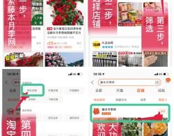 藤本月季网淘宝店铺购买指南